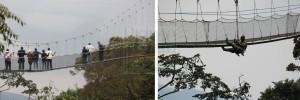 canopy-walk
